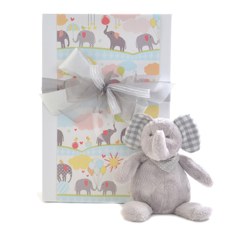 Bundle of Joy Baby Gift image 0
