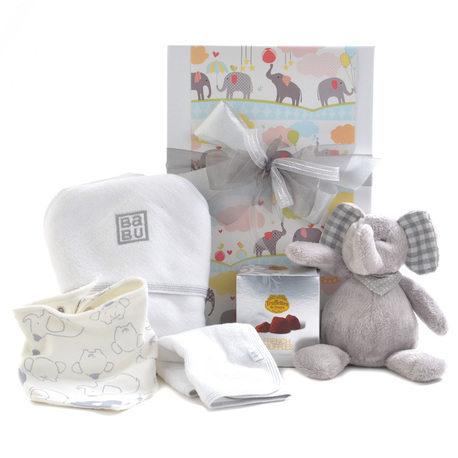 Bundle of Joy Baby Gift image 1