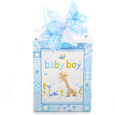 Little Wraps Baby Boy Gift