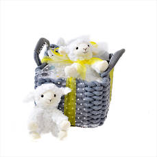 A Star is Born Baby Gift Basket