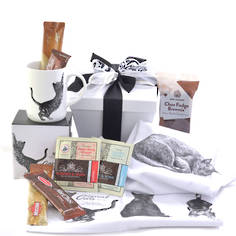 Cat-Ch Up Gift Box
