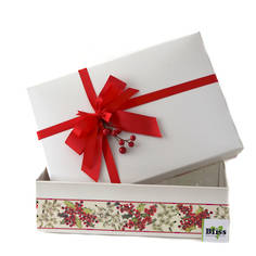 Merry and Bright Christmas  Gift Box