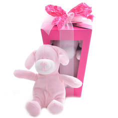 Puppy Love Gift Box