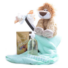 Babies Best Friend Gift Basket