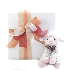 Lacey Lamb Baby Gift